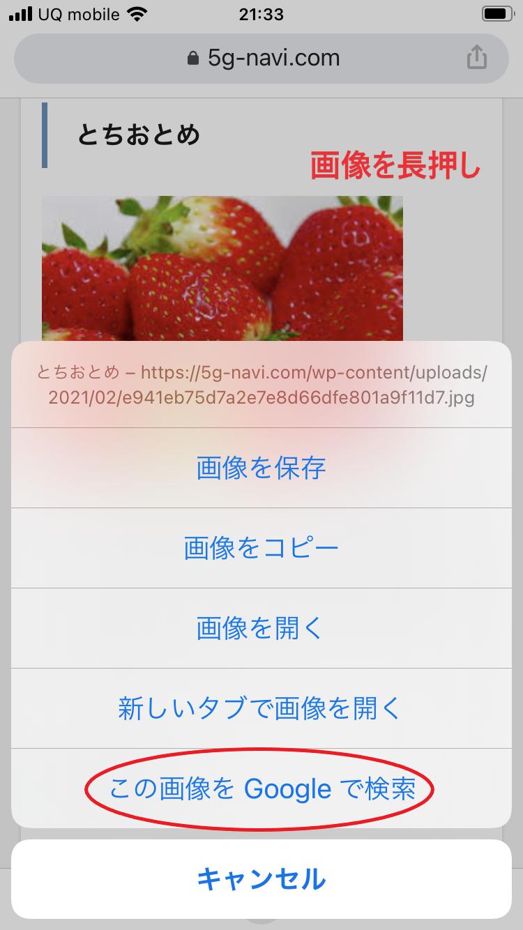 Google画像検索 方法 スマホ-7