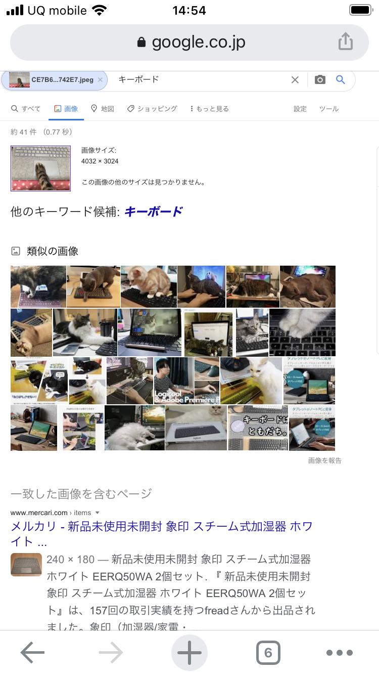 Google画像検索 方法 スマホ-6