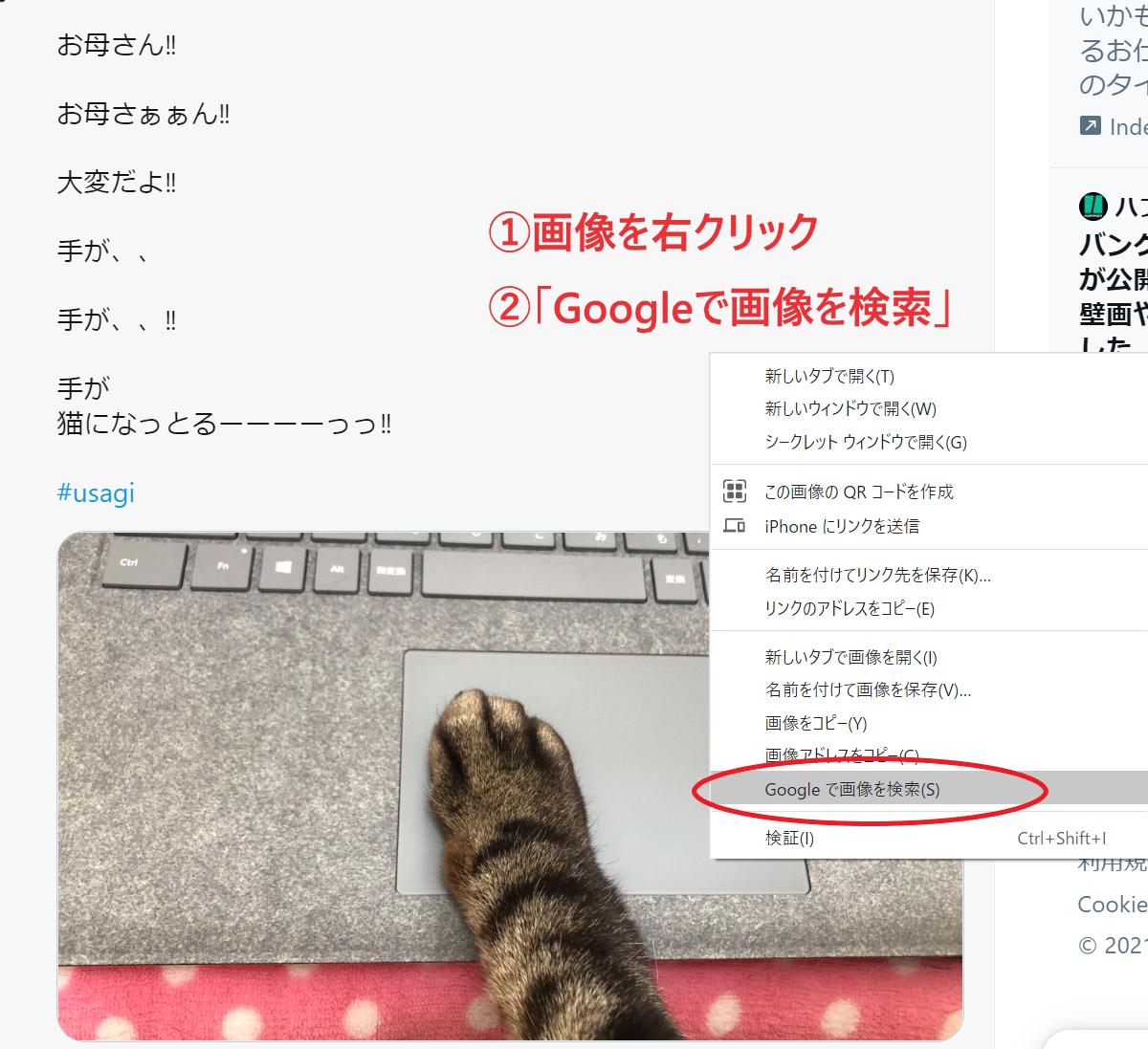 Google画像検索 方法 PC-6