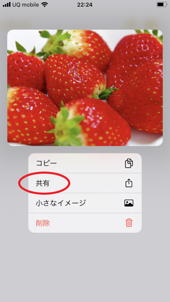 Google画像検索 方法 スマホ-11
