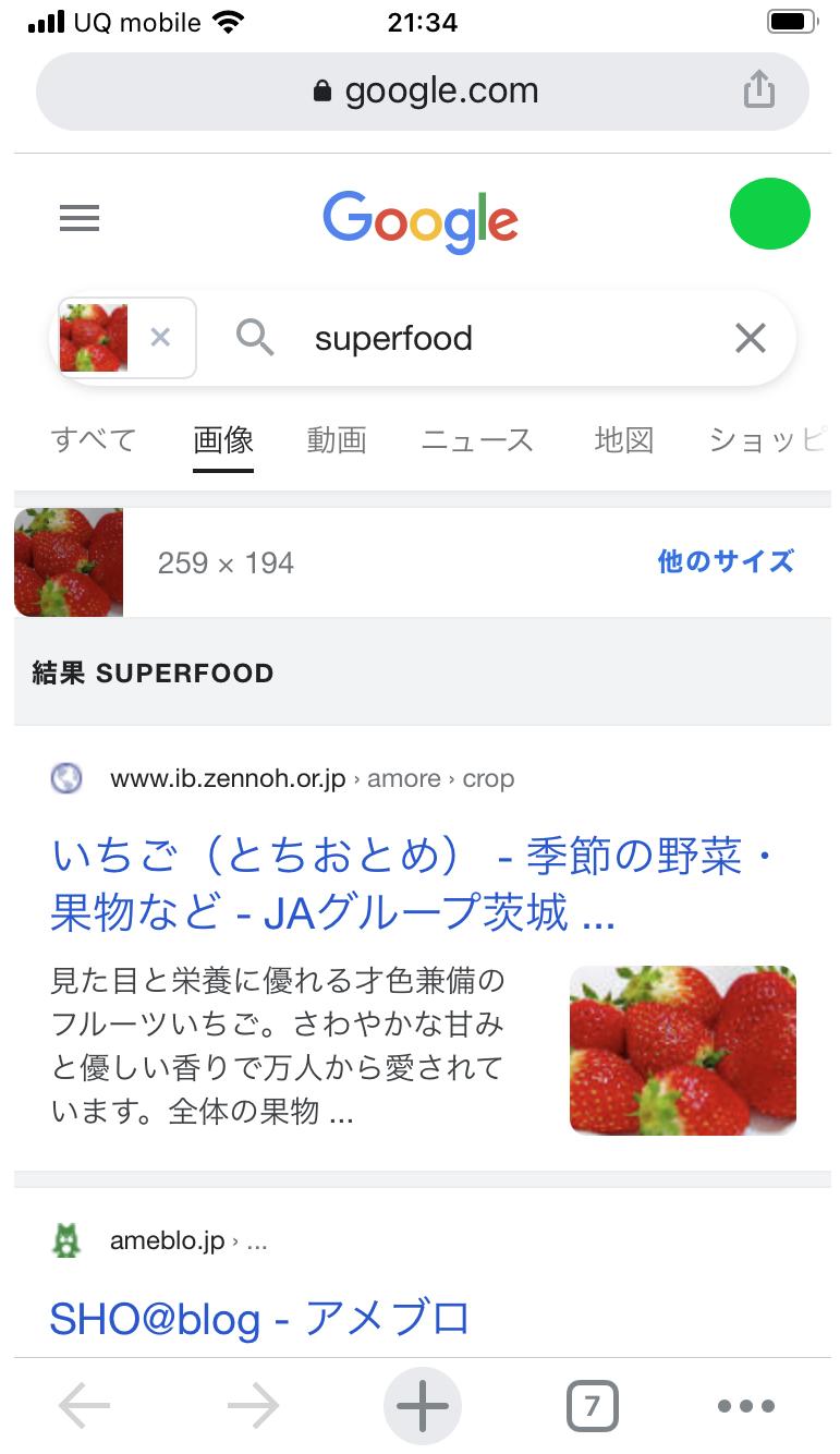 Google画像検索 方法 スマホ-8